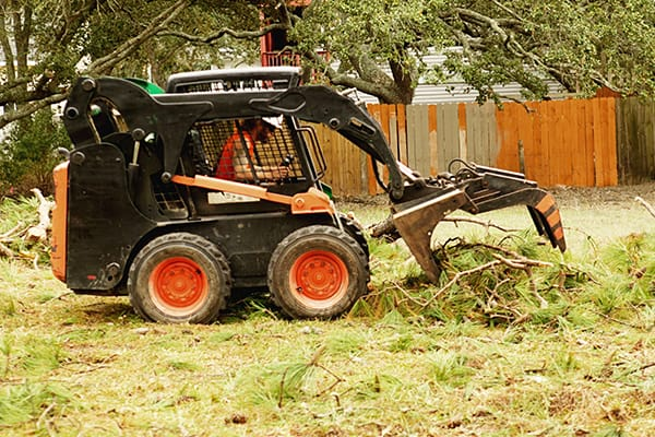 emergency tree service norfolk